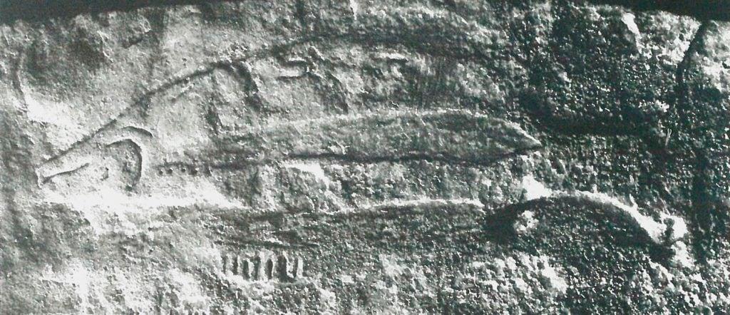 saumon-grave